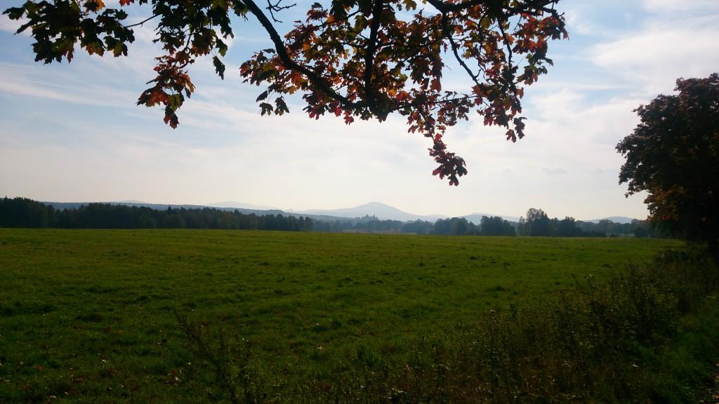 Blick zum Tannenberg / Jedlová (774 m) von einer Anhöhe bei Schönlinde / Krásná Lípa.