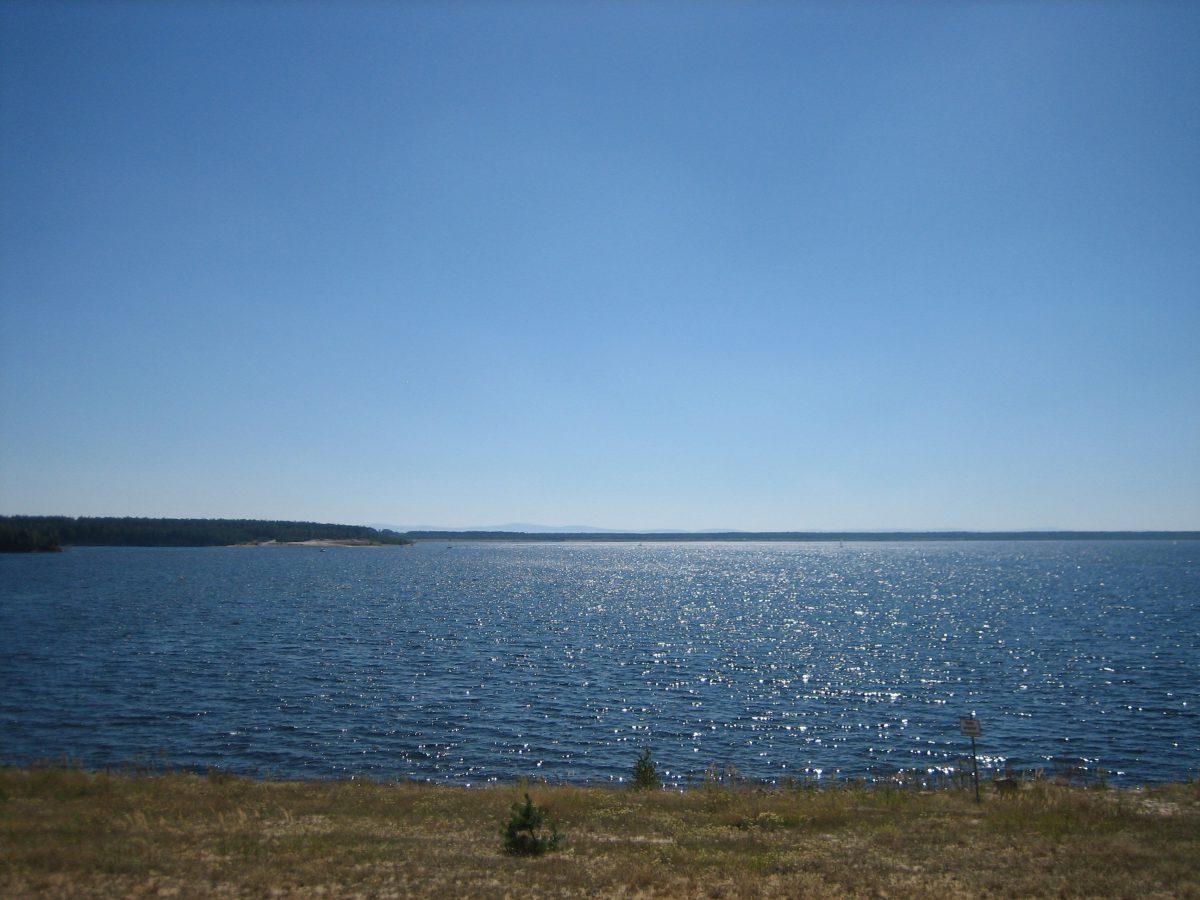 Bärwalder See Nordufer.