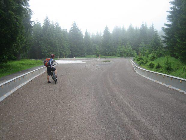 Waldautobahn mit Leitplanken.