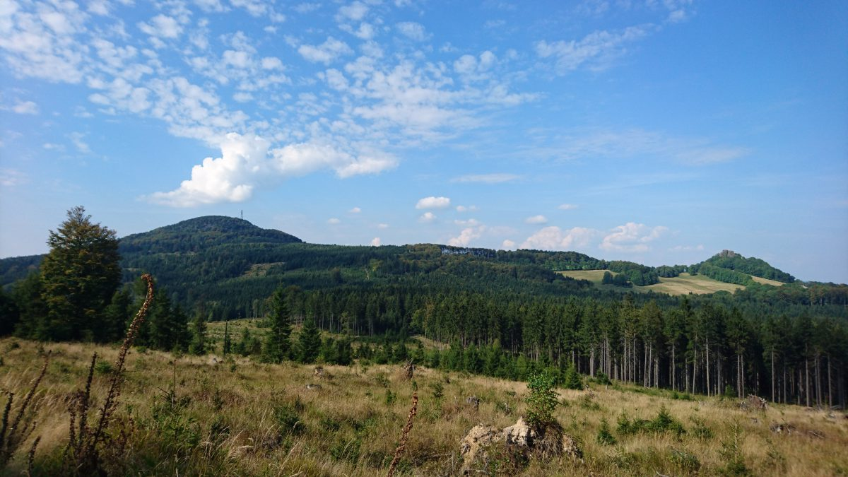 Blick zum Tannenberg / Jedlová (774 m) und zur Burg Tollenstein / Tolštejn (670 m) vom Nordhang des Hanfkuchen / Konopáč (676 m).