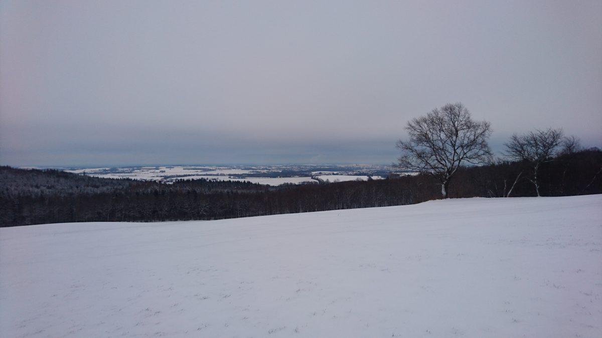 Bautzen-Blick von Anhöhe bei Sora.