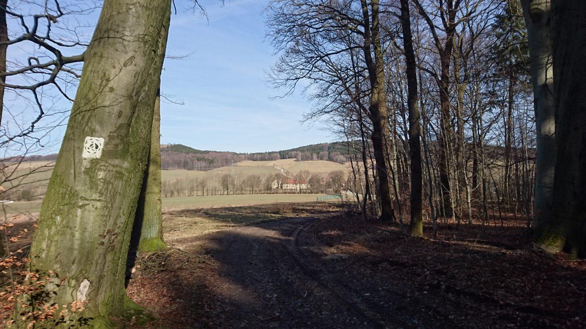 Tautewalde: Blick Richtung Galgenberg und Großer Picho.