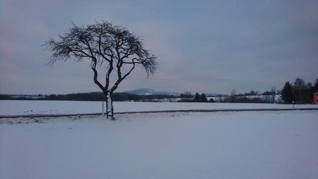 Bei Schwarznaußlitz.